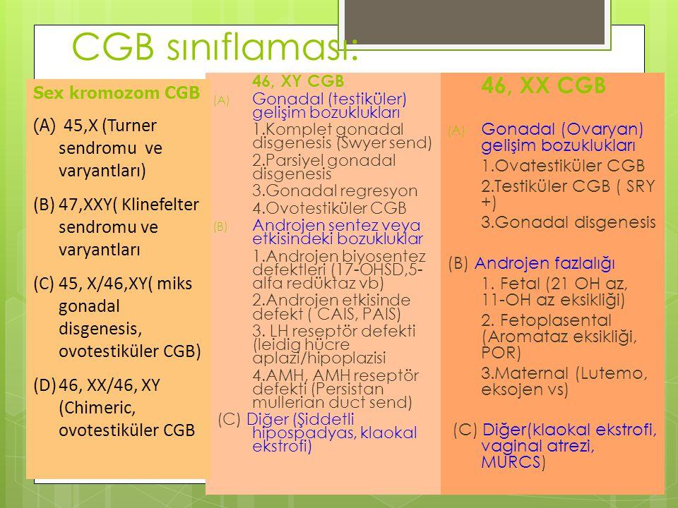 CGB sınıflaması: 47,XXY( Klinefelter sendromu ve varyantları