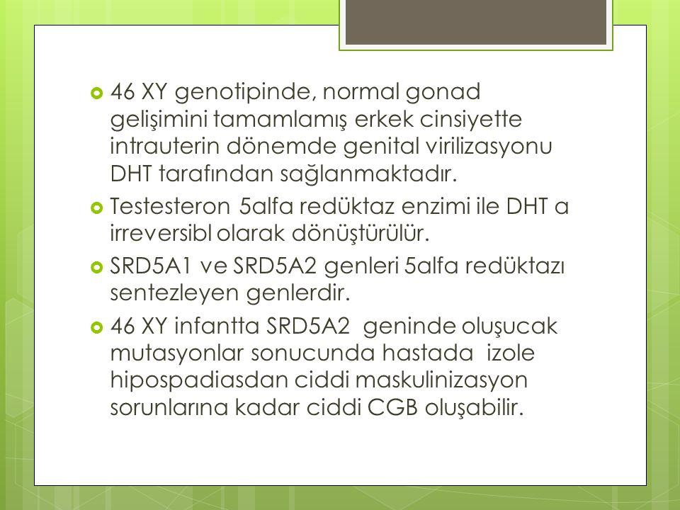 46 XY genotipinde, normal gonad gelişimini tamamlamış erkek cinsiyette intrauterin dönemde genital virilizasyonu DHT tarafından sağlanmaktadır.