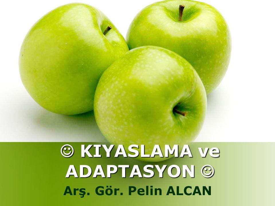  KIYASLAMA ve ADAPTASYON 