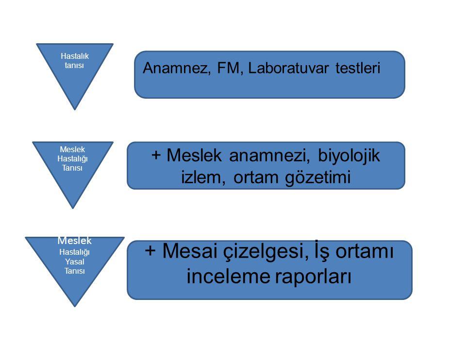 + Mesai çizelgesi, İş ortamı inceleme raporları