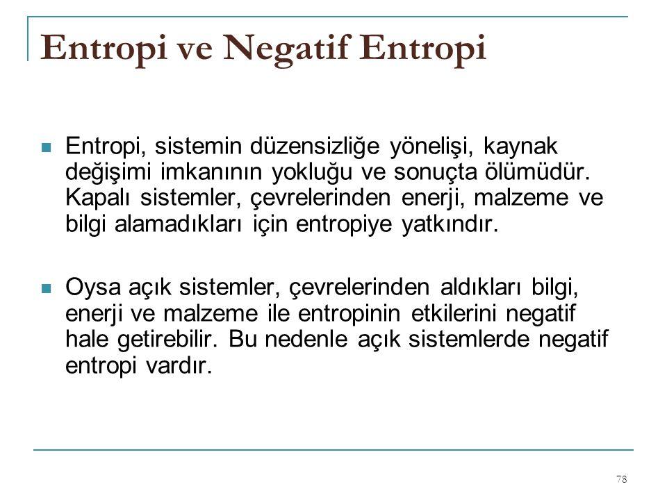 Entropi ve Negatif Entropi
