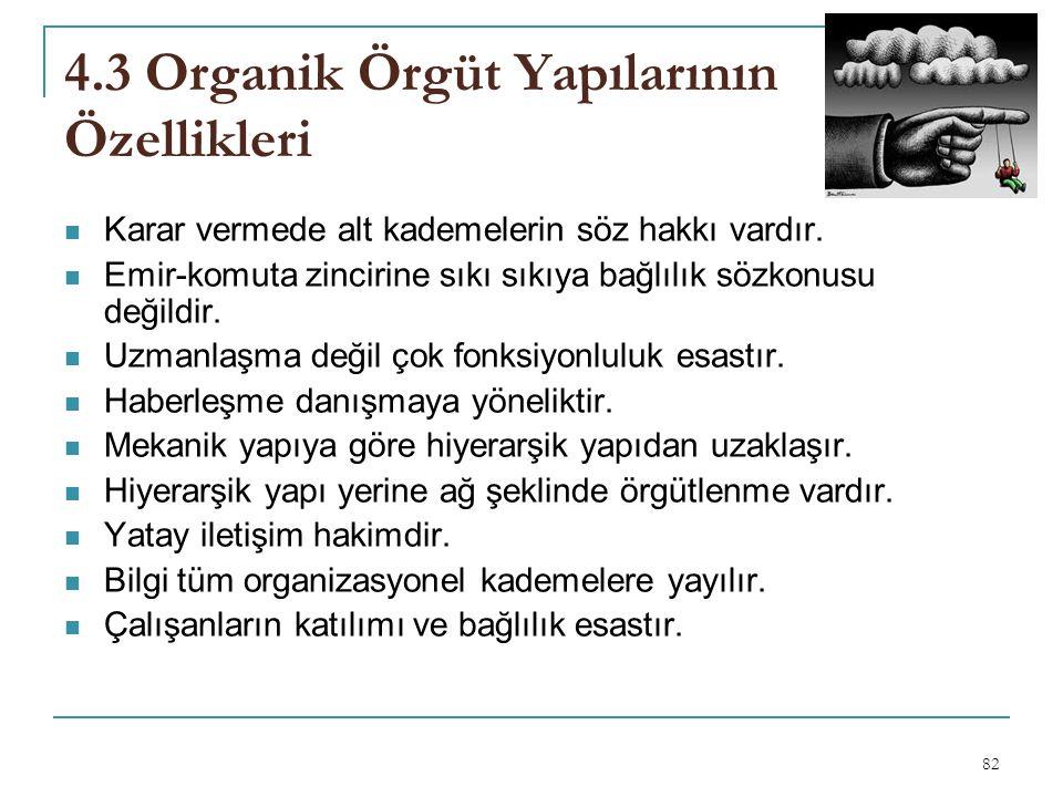 4.3 Organik Örgüt Yapılarının Özellikleri