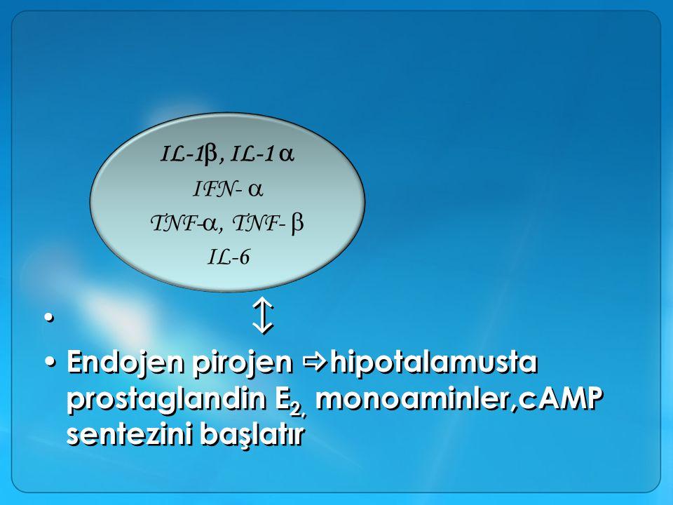 IL-1, IL-1  IFN-  TNF-, TNF-  IL-6.  Endojen pirojen hipotalamusta prostaglandin E2, monoaminler,cAMP sentezini başlatır.