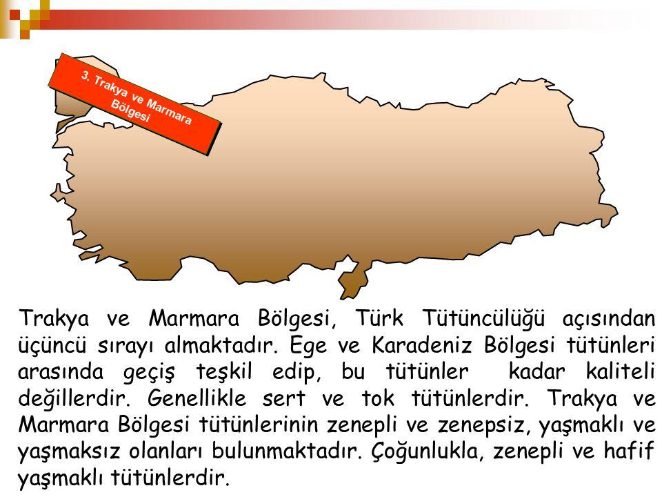 3. Trakya ve Marmara Bölgesi