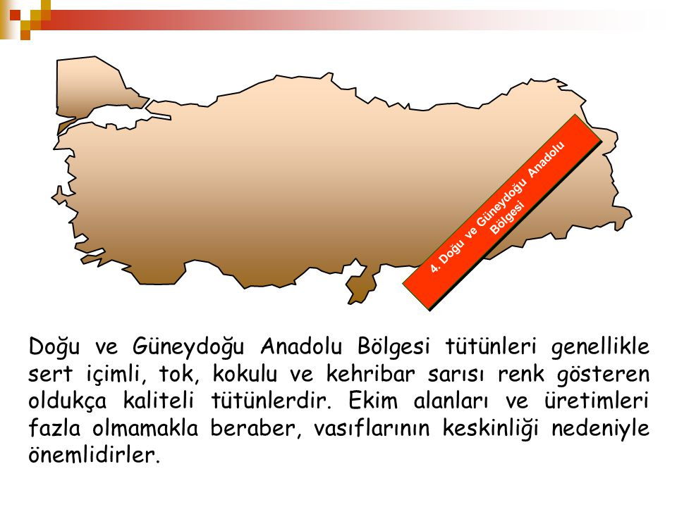 4. Doğu ve Güneydoğu Anadolu Bölgesi