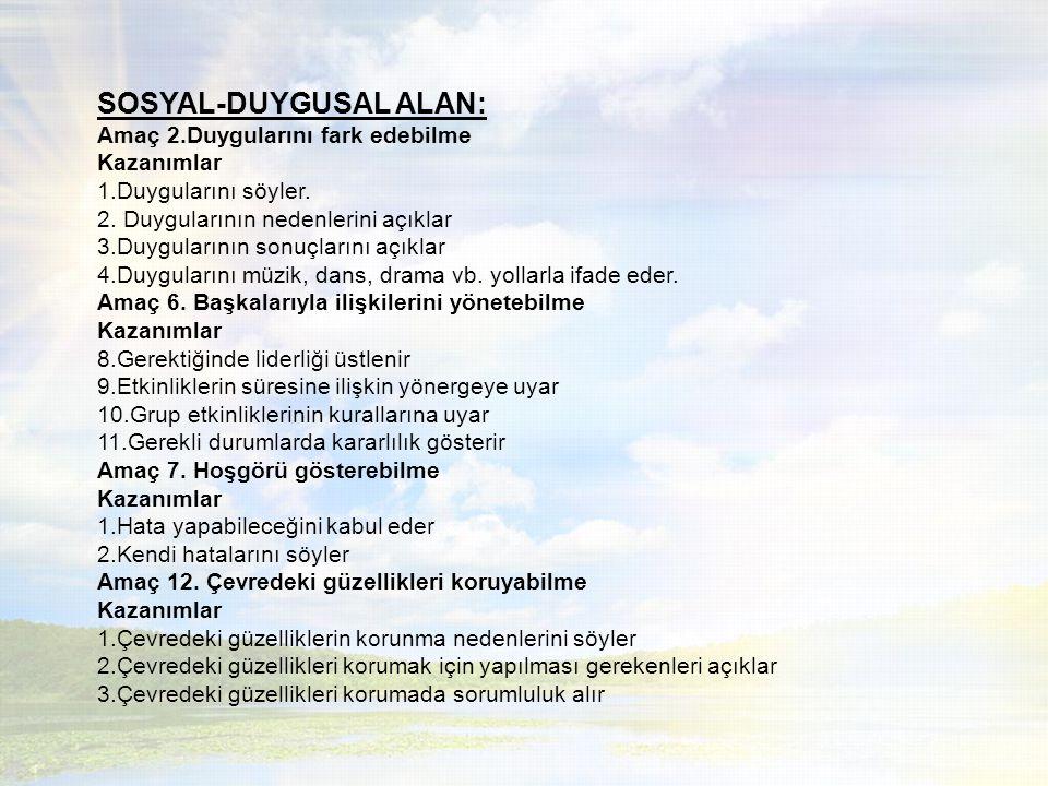 SOSYAL-DUYGUSAL ALAN:
