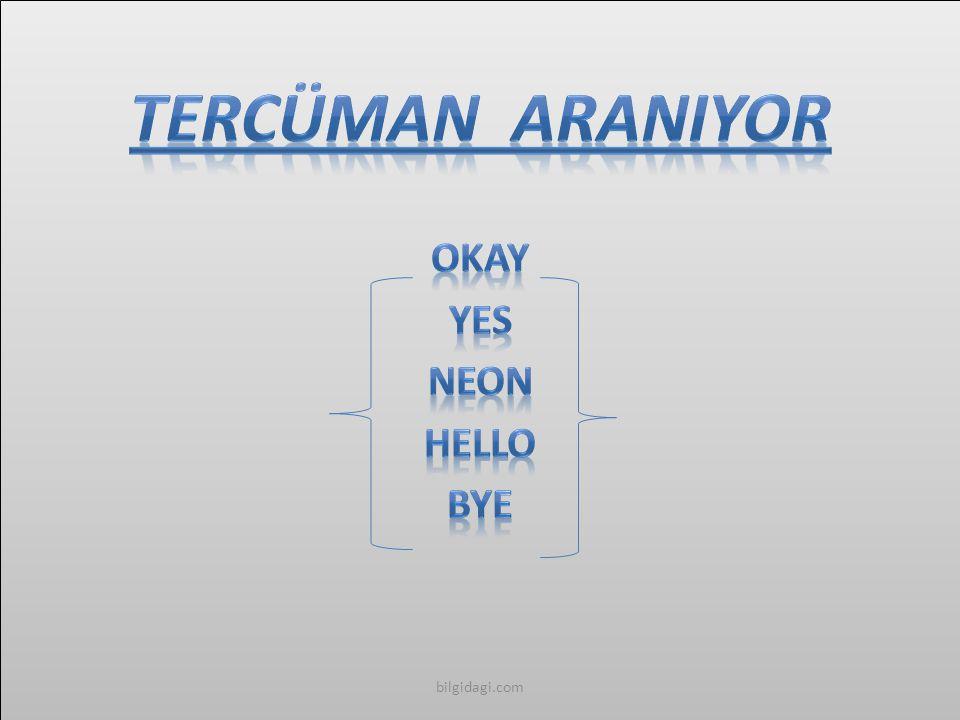 TERCÜMAN ARANIYOR Okay Yes Neon Hello Bye