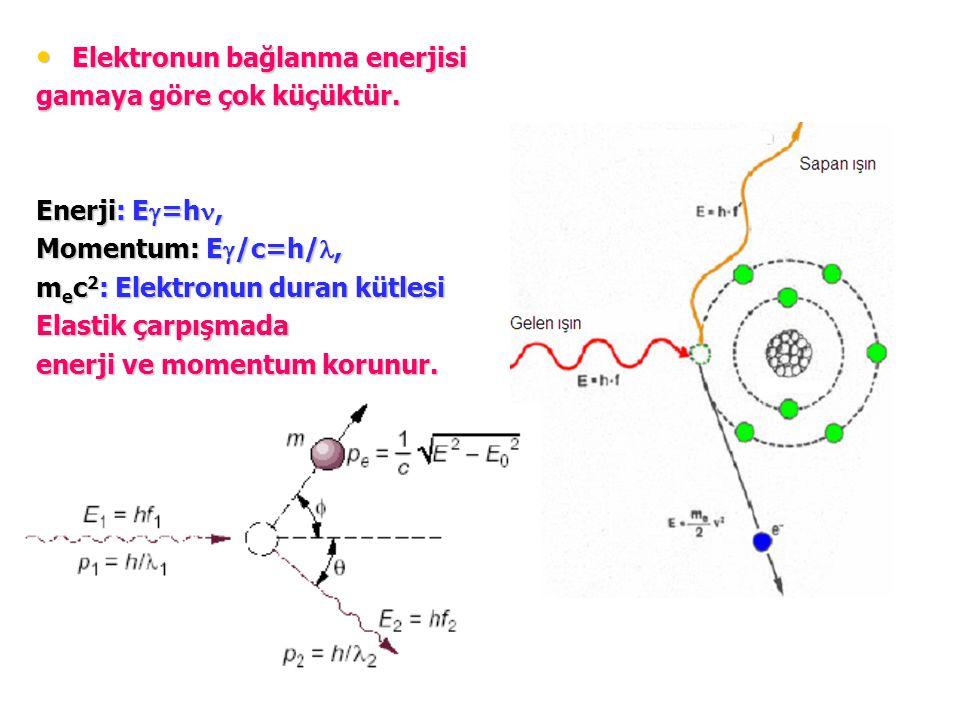 Elektronun bağlanma enerjisi