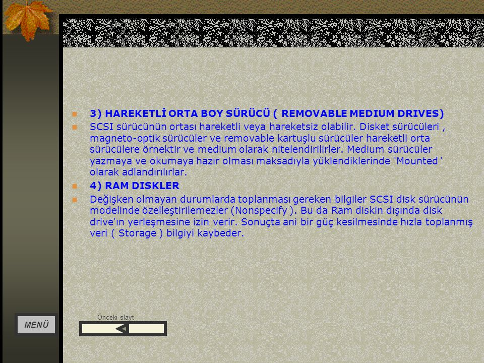 3) HAREKETLİ ORTA BOY SÜRÜCÜ ( REMOVABLE MEDIUM DRIVES)