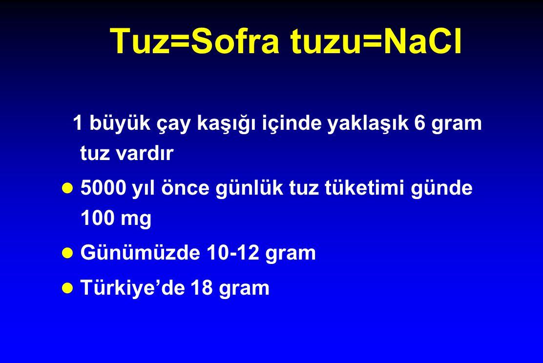 Tuz=Sofra tuzu=NaCl 1 büyük çay kaşığı içinde yaklaşık 6 gram tuz vardır. 5000 yıl önce günlük tuz tüketimi günde 100 mg.