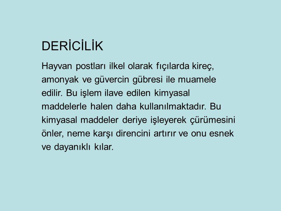DERİCİLİK