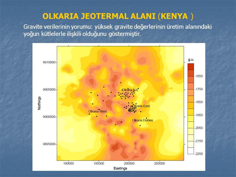 OLKARIA JEOTERMAL ALANI (KENYA )