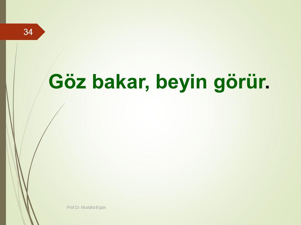 Göz bakar, beyin görür. Prof.Dr. Mustafa Ergün