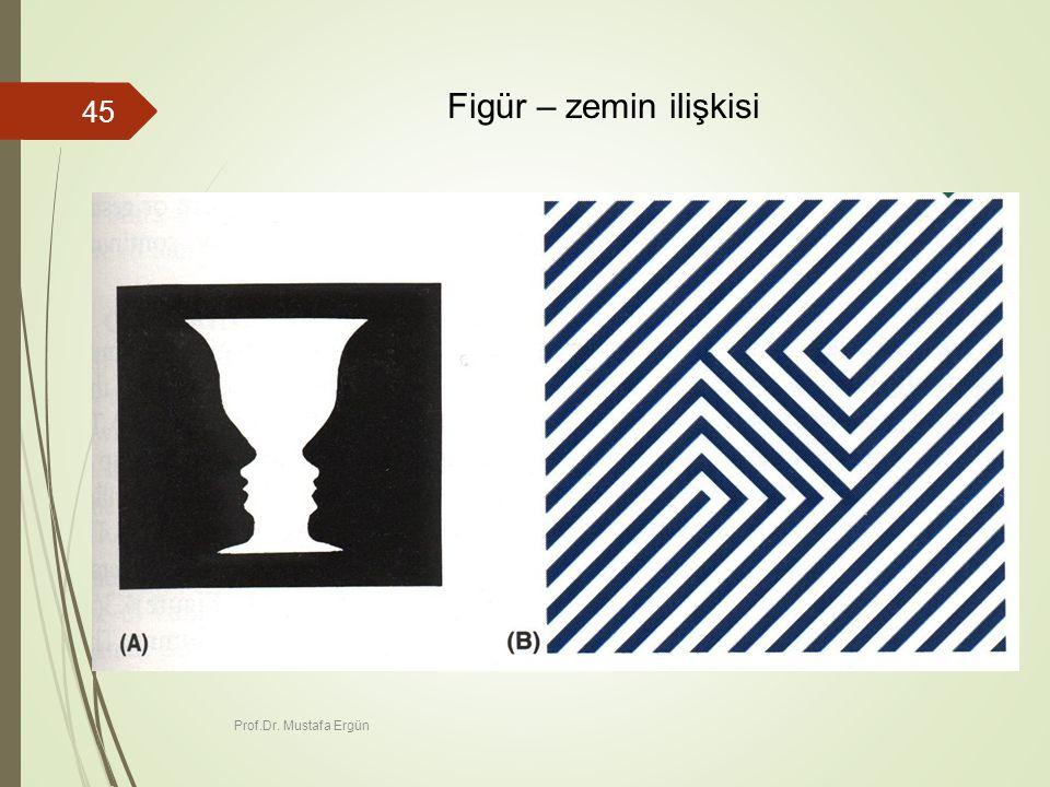 Figür – zemin ilişkisi Prof.Dr. Mustafa Ergün