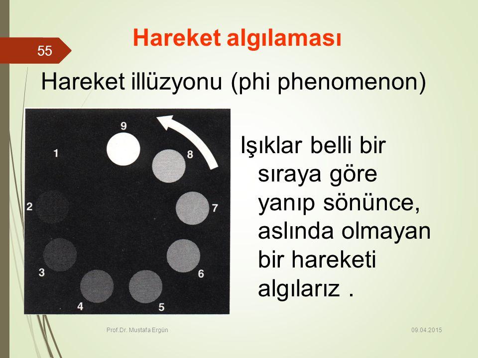 Hareket illüzyonu (phi phenomenon)