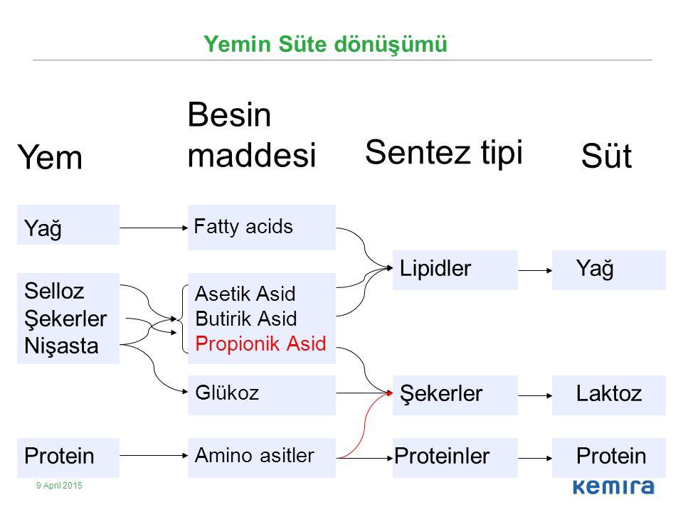 Besin maddesi Sentez tipi Yem Süt Yemin Süte dönüşümü Yağ Lipidler Yağ