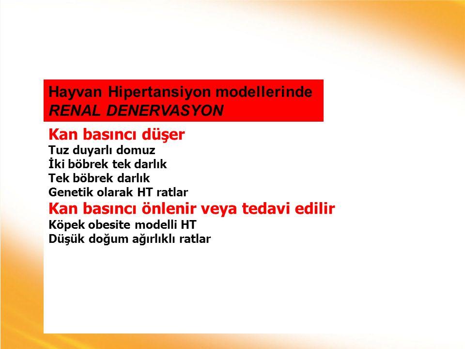 Hayvan Hipertansiyon modellerinde RENAL DENERVASYON