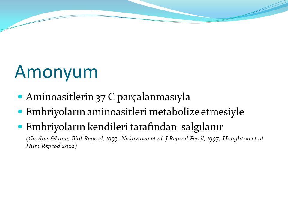 Amonyum Aminoasitlerin 37 C parçalanmasıyla
