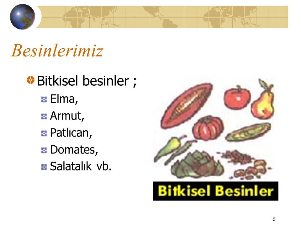 Besinlerimiz Bitkisel besinler ; Elma, Armut, Patlıcan, Domates,