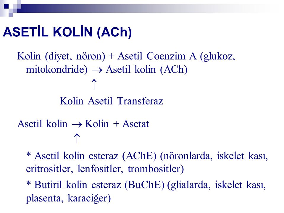 ASETİL KOLİN (ACh) Kolin (diyet, nöron) + Asetil Coenzim A (glukoz, mitokondride)  Asetil kolin (ACh)