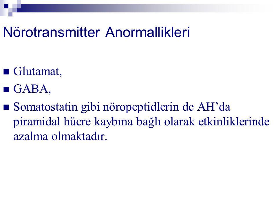 Nörotransmitter Anormallikleri
