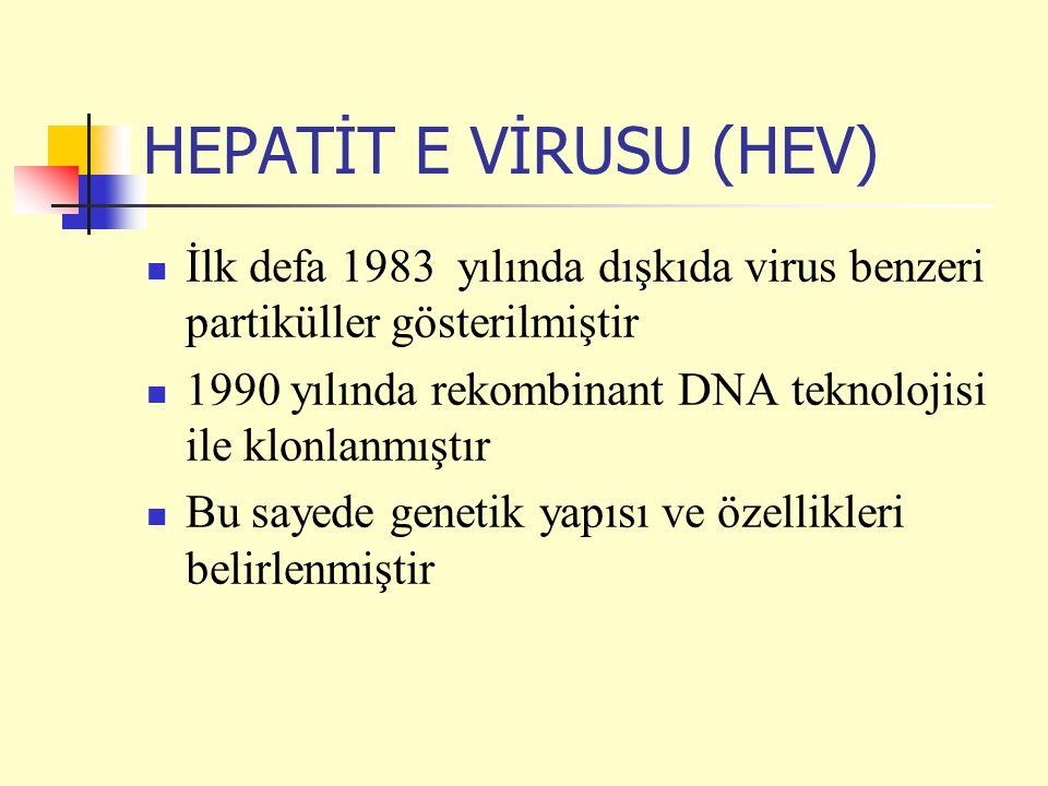 HEPATİT E VİRUSU (HEV) İlk defa 1983 yılında dışkıda virus benzeri partiküller gösterilmiştir.