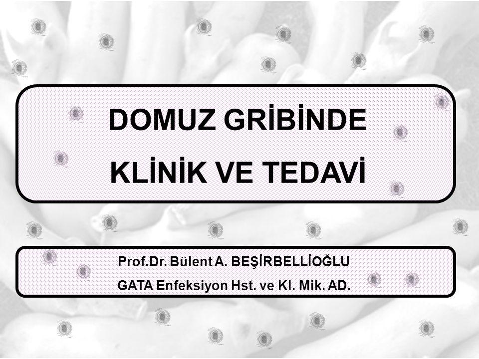 Prof.Dr. Bülent A. BEŞİRBELLİOĞLU GATA Enfeksiyon Hst. ve Kl. Mik. AD.