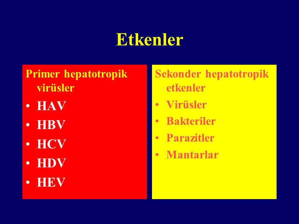 Etkenler HAV HBV HCV HDV HEV Primer hepatotropik virüsler