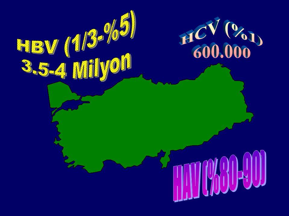 HBV (1/3-%5) 3.5-4 Milyon HCV (%1) 600.000 HAV (%80-90)