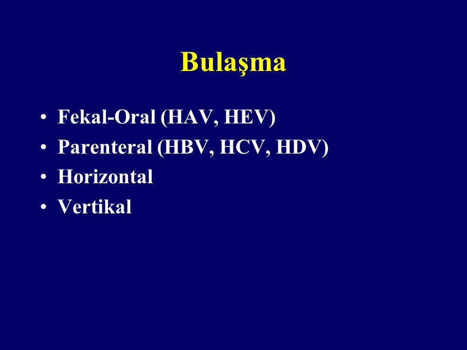 Bulaşma Fekal-Oral (HAV, HEV) Parenteral (HBV, HCV, HDV) Horizontal