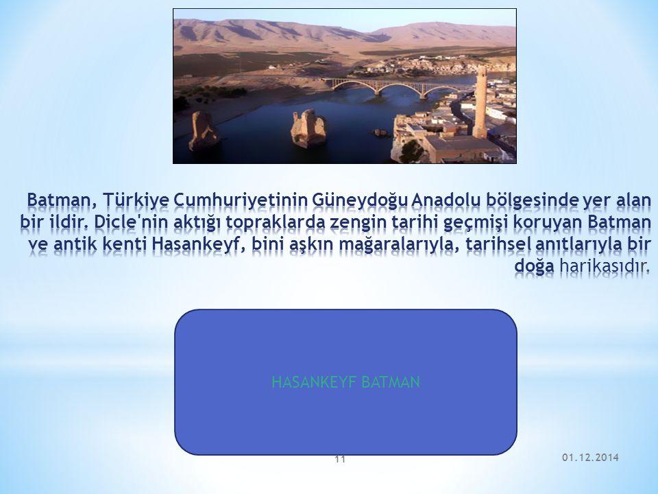 Batman, Türkiye Cumhuriyetinin Güneydoğu Anadolu bölgesinde yer alan bir ildir. Dicle nin aktığı topraklarda zengin tarihi geçmişi koruyan Batman ve antik kenti Hasankeyf, bini aşkın mağaralarıyla, tarihsel anıtlarıyla bir doğa harikasıdır.