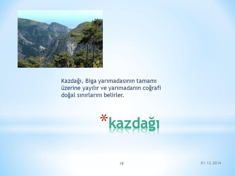 Kazdağı, Biga yarımadasının tamamı üzerine yayılır ve yarımadanın coğrafi doğal sınırlarını belirler.