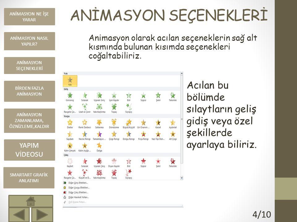 ANİMASYON SEÇENEKLERİ