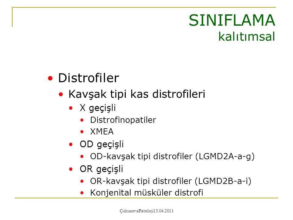SINIFLAMA kalıtımsal Distrofiler Kavşak tipi kas distrofileri