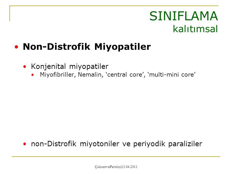 SINIFLAMA kalıtımsal Non-Distrofik Miyopatiler Konjenital miyopatiler