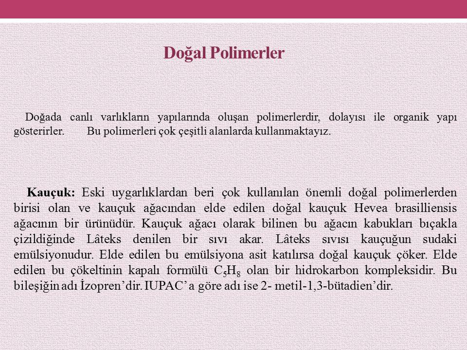 Doğal Polimerler