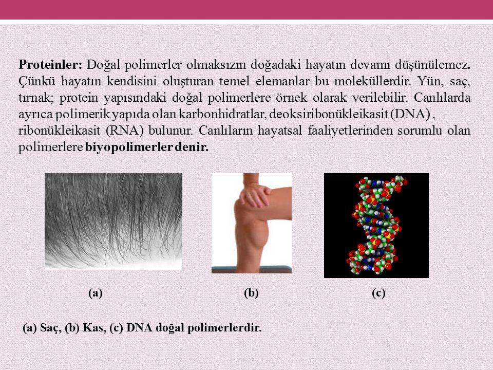 Proteinler: Doğal polimerler olmaksızın doğadaki hayatın devamı düşünülemez. Çünkü hayatın kendisini oluşturan temel elemanlar bu moleküllerdir. Yün, saç, tırnak; protein yapısındaki doğal polimerlere örnek olarak verilebilir. Canlılarda ayrıca polimerik yapıda olan karbonhidratlar, deoksiribonükleikasit (DNA) ,