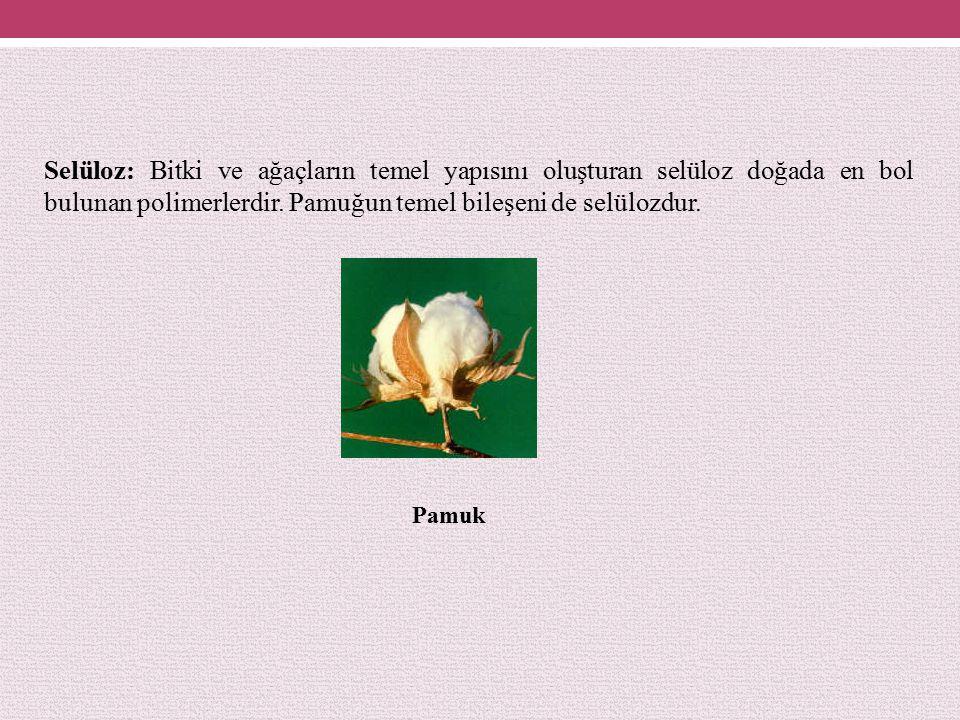 Selüloz: Bitki ve ağaçların temel yapısını oluşturan selüloz doğada en bol bulunan polimerlerdir. Pamuğun temel bileşeni de selülozdur.