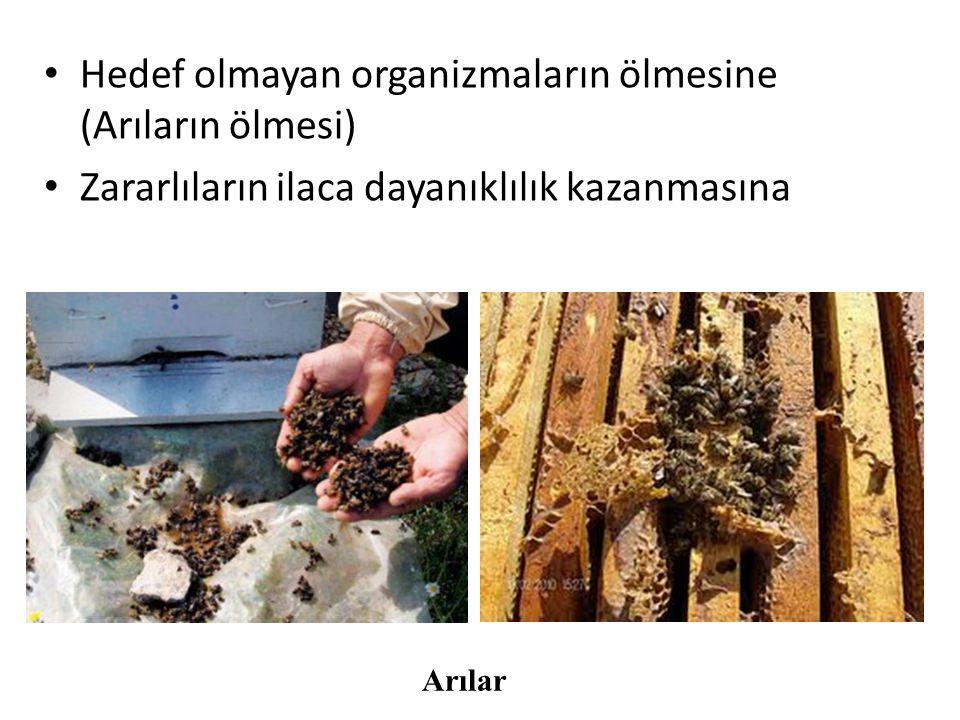 Hedef olmayan organizmaların ölmesine (Arıların ölmesi)