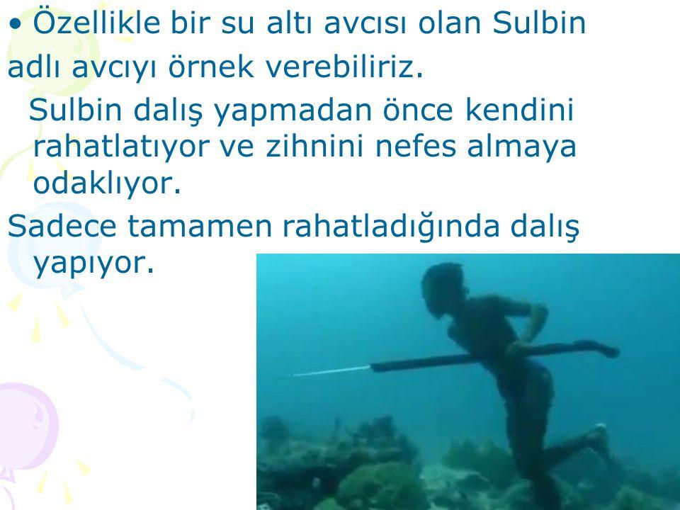 Özellikle bir su altı avcısı olan Sulbin