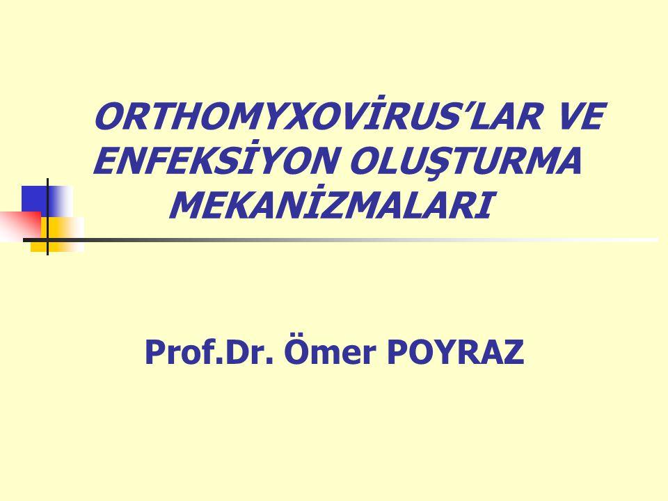 ORTHOMYXOVİRUS'LAR VE ENFEKSİYON OLUŞTURMA MEKANİZMALARI