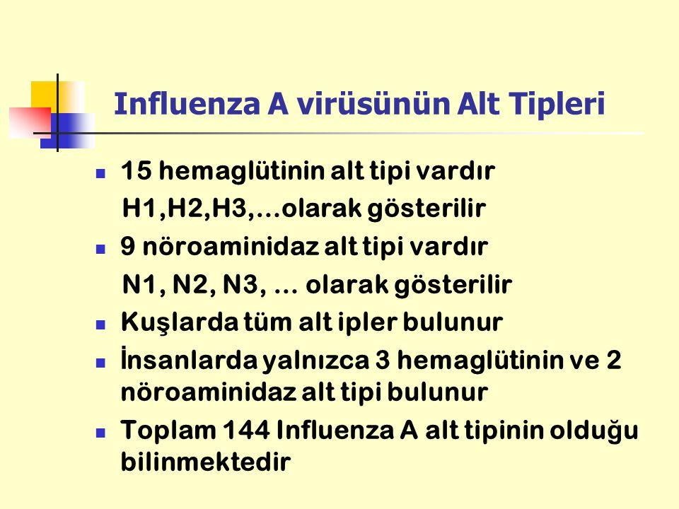 Influenza A virüsünün Alt Tipleri