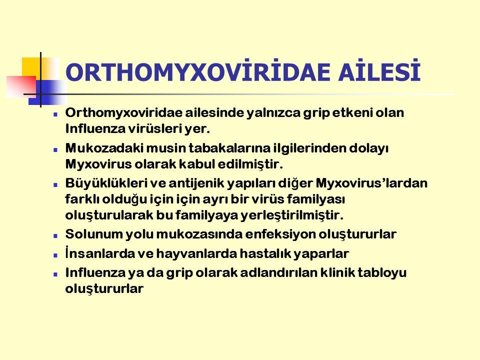 ORTHOMYXOVİRİDAE AİLESİ