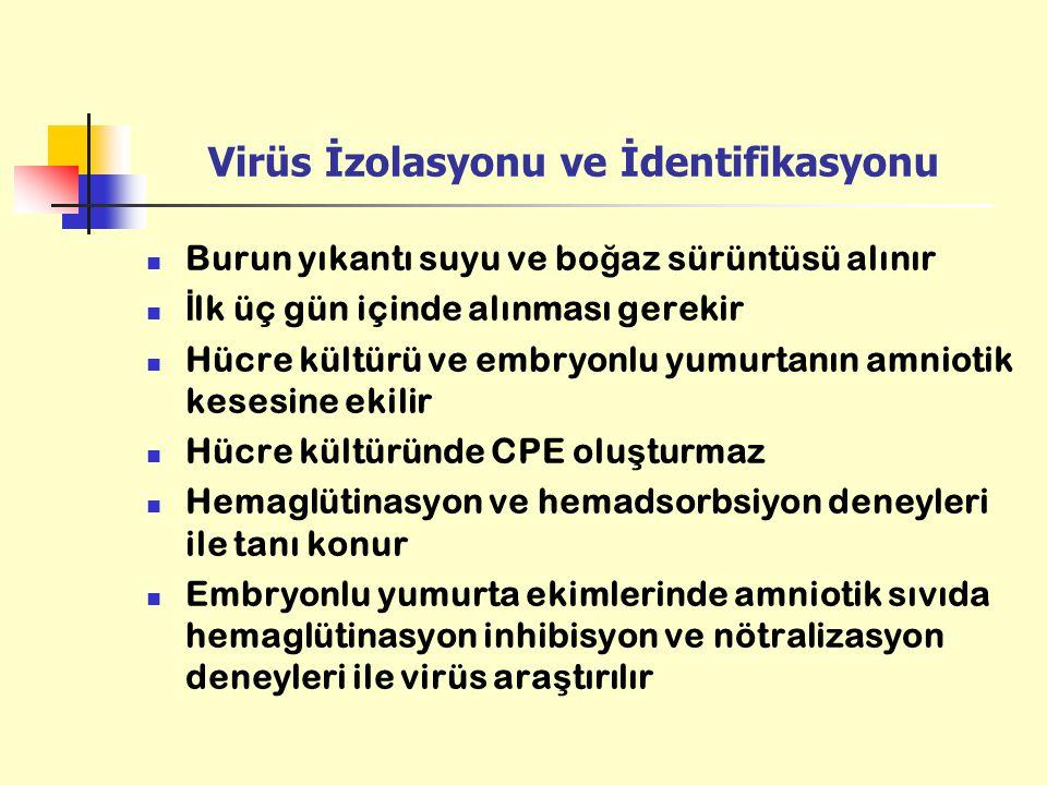 Virüs İzolasyonu ve İdentifikasyonu