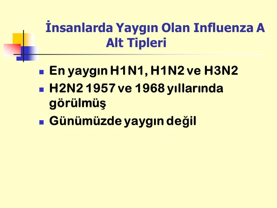 İnsanlarda Yaygın Olan Influenza A Alt Tipleri