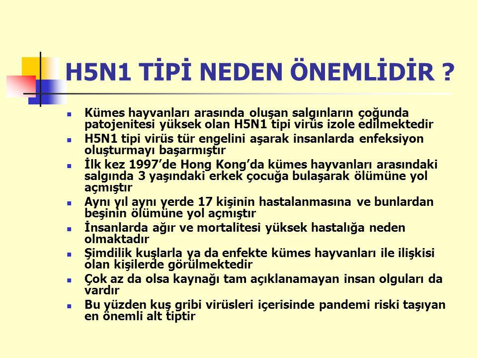 H5N1 TİPİ NEDEN ÖNEMLİDİR