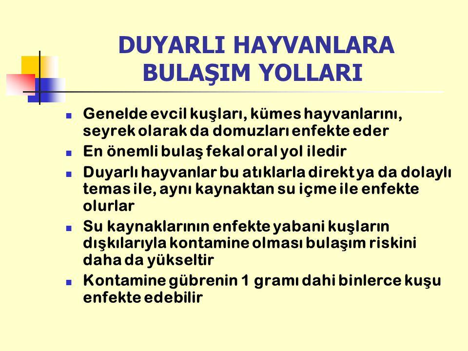 DUYARLI HAYVANLARA BULAŞIM YOLLARI