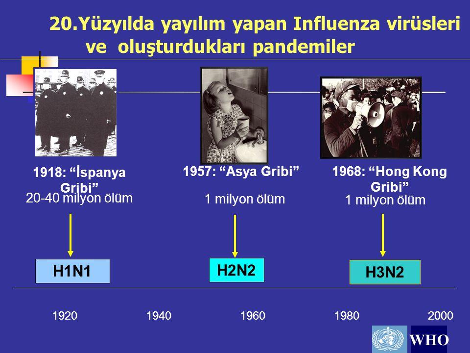 20.Yüzyılda yayılım yapan Influenza virüsleri ve oluşturdukları pandemiler