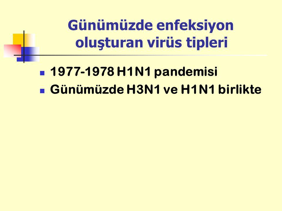 Günümüzde enfeksiyon oluşturan virüs tipleri