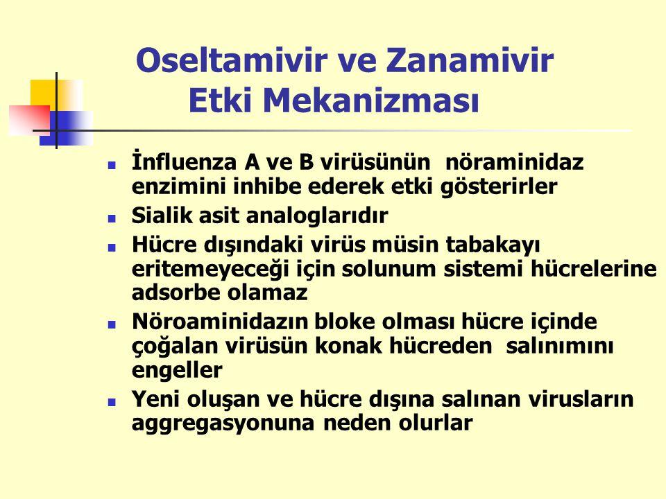 Oseltamivir ve Zanamivir Etki Mekanizması
